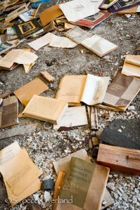 ghost town, abandoned city, siberia, russia, books, remains, possessions